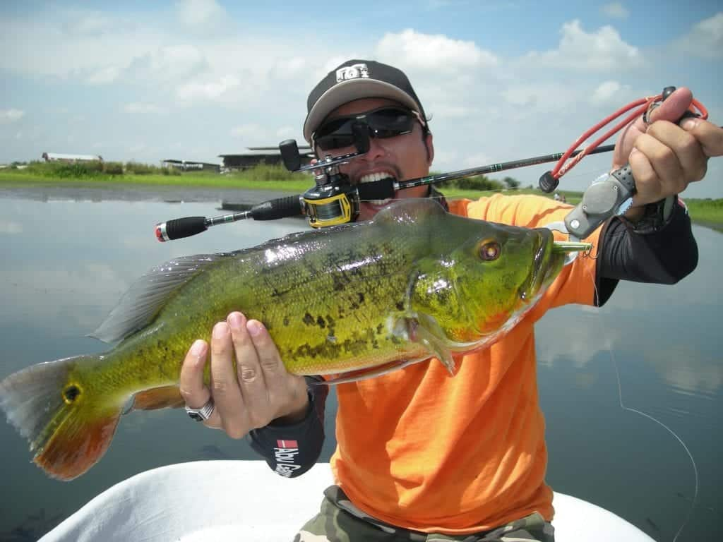 Fishing Reels: A Guide To Buy The Perfect One